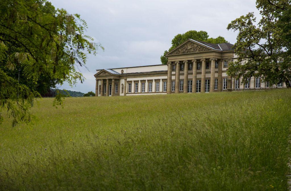 Unterhalb von Schloss Rosenstein wird die Stadt Stuttgart Ende November sieben Bäume fällen. Foto: Lichtgut/Leif Piechowski