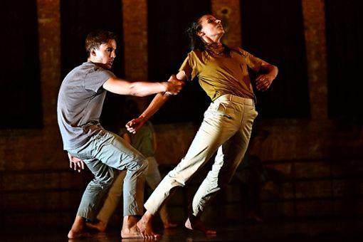 """Beim """"Holiday Special 2019"""" von Gauthier Dance ist unter anderem Virginie Brunelles Choreographie """"Beating"""" im Stuttgarter Theaterhaus zu sehen."""
