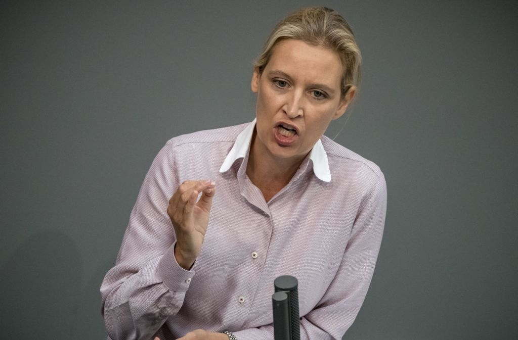 Bewusste Provokation: Alice Weidel im Bundestag. Foto: dpa