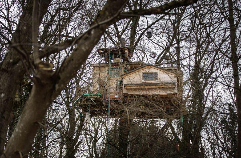 Das Baumhaus in gut zehn Metern Höhe ist eine imposante Erscheinung. Foto: Gottfried Stoppel