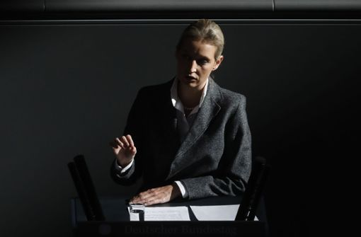 AfD-Landeschef verspricht Aufklärung – Ansage an Alice Weidel