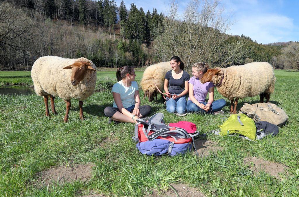 Emely, Clara und Annika (vl) mit ihren Schafen am Ostersonntag auf einer Wiese im Fehlatal. Foto: dpa