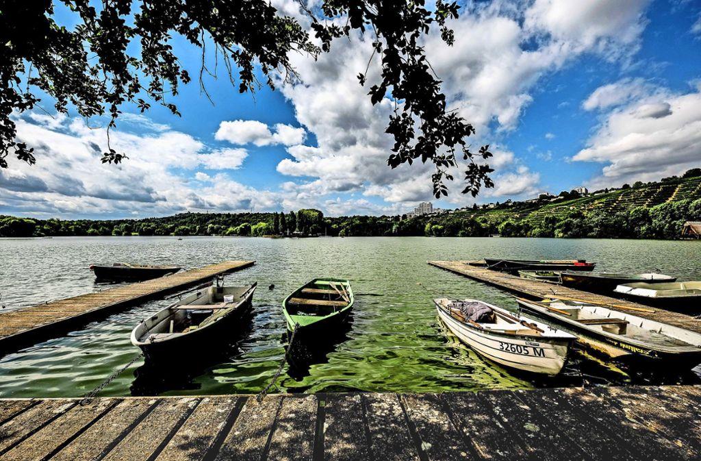 Schön gelegenes und beliebtes Freizeitgewässer: der Max-Eyth-See. Doch derzeit ist Vorsicht geboten. Foto: Lichtgut/Leif Piechowski