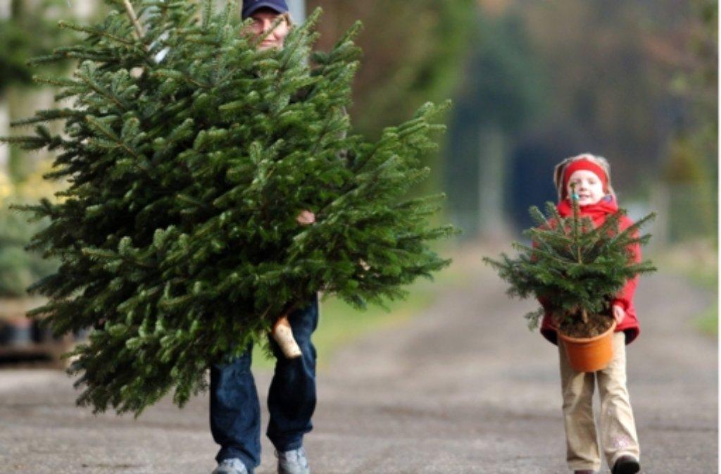 Wann Wurde Der Geschmückte Weihnachtsbaum Populär.24 Fakten Rund Um Weihnachten Klicken Sie Sich Durch Die