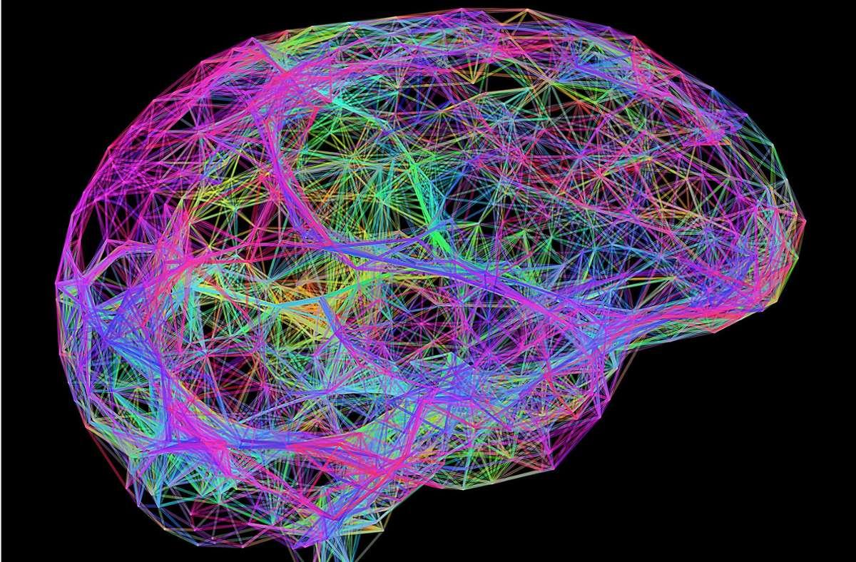 Eine dreidimensionale Computergrafik des menschlichen Gehirns Foto: Mauritius Images/Science Photo Library