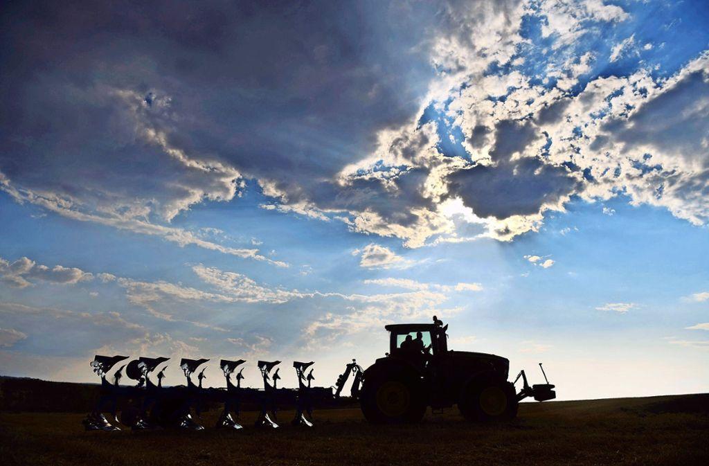 Auch wenn die Böden auf den Fildern besonders gut sind: Der mangelnde Niederschlag bereitet den Landwirten zunehmend Sorgen. Foto: dpa/Frank May