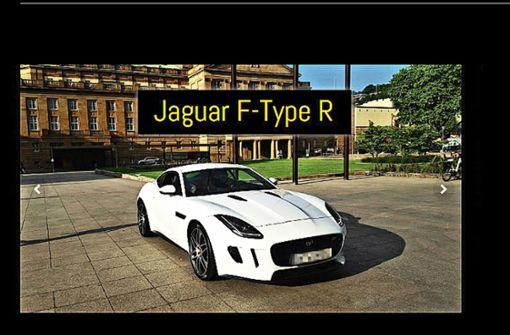 Jaguar-Vermieter legt seine Internetseite  still