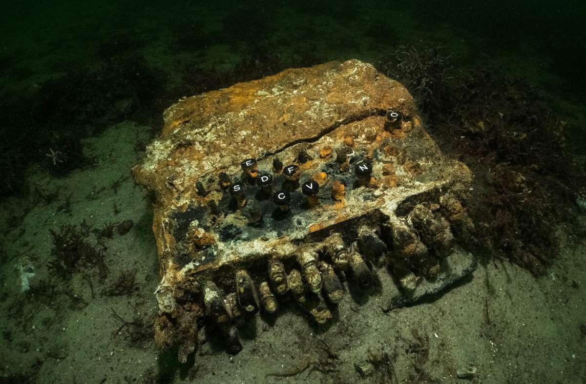 Enigma-Chiffriermaschine aus dem 2. Weltkrieg liegt auf dem Grund der Ostsee. Bei der Suche nach herrenlosen Fischernetzen in der Ostsee haben Forschungstaucher die Enigma-Chiffriermaschine gefunden. Foto: Florian Huber/submaris/dpa