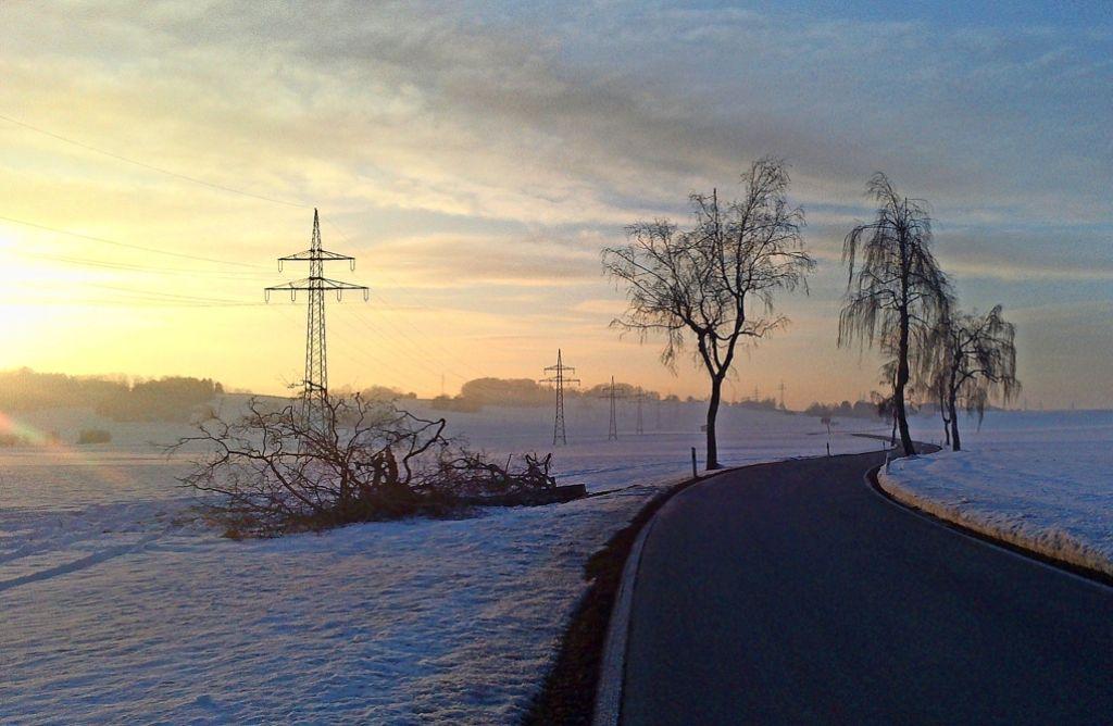 An der Kreisstraße in Weiler stand  einst   eine Allee aus Birken Foto: Bettina Maschke