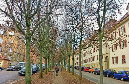 Kein Weg führt zum Neckarufer