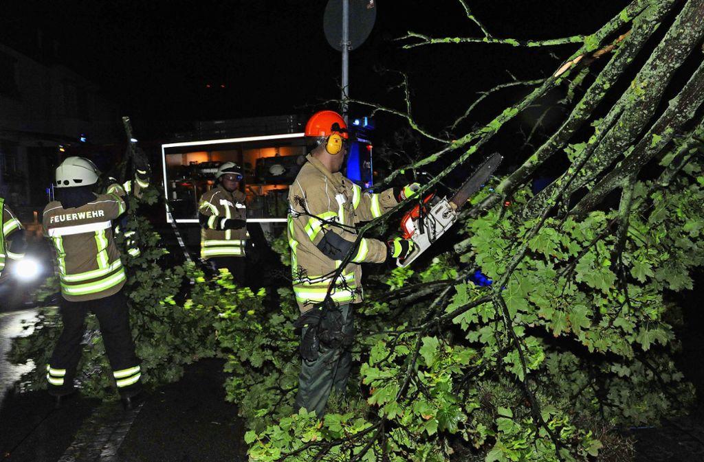 In Fellbach, aber auch anderswo im Kreis mussten Feuerwehr und Polizei wegen umgestürzter Bäume ausrücken. Foto: Alexander Ernst