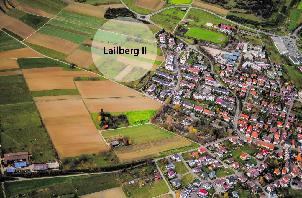 Jetzt folgt das Umlegungsverfahren im Neubaugebiet Lailberg II. Danach kann die Erschließung beginnen. Foto: Holger Leicht