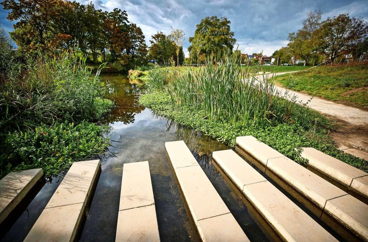 Vielerorts wurden für die Gartenschau neue Zugänge zur Rems geschaffen – wie an den Mühlwiesen in Großheppach. Foto: Gottfried Stoppel