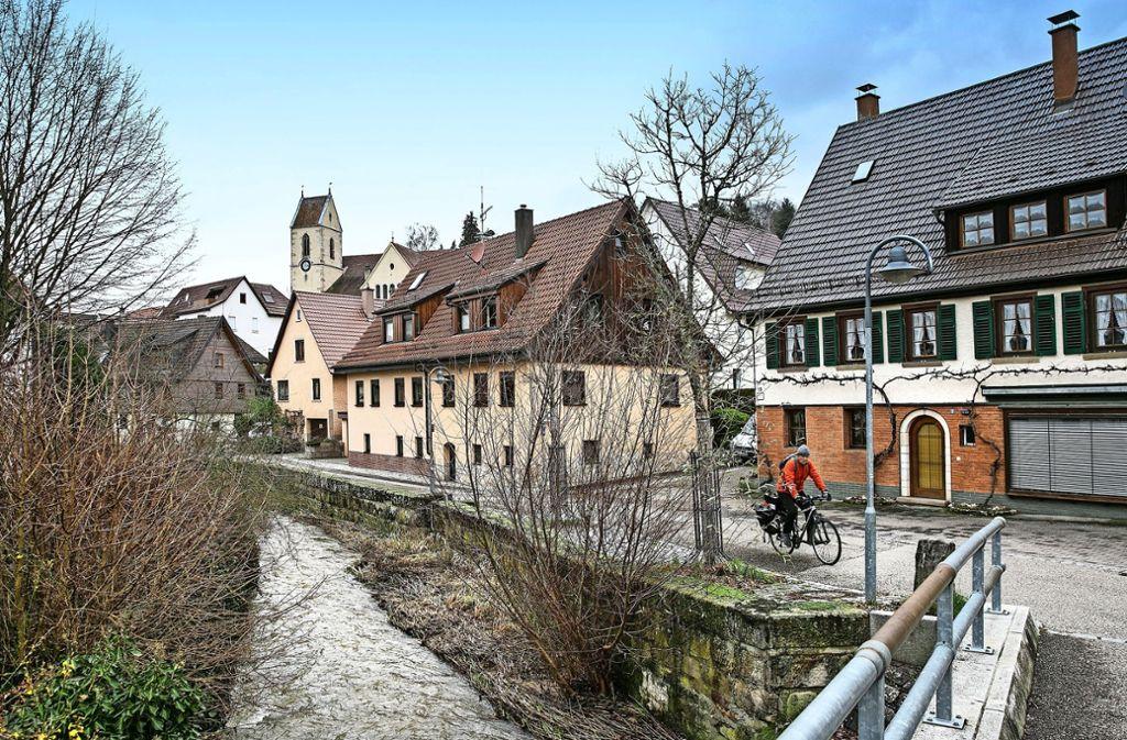 Über Reichenbach weht in diesem Jahr der Mantel der Geschichte. Foto: Horst Rudel