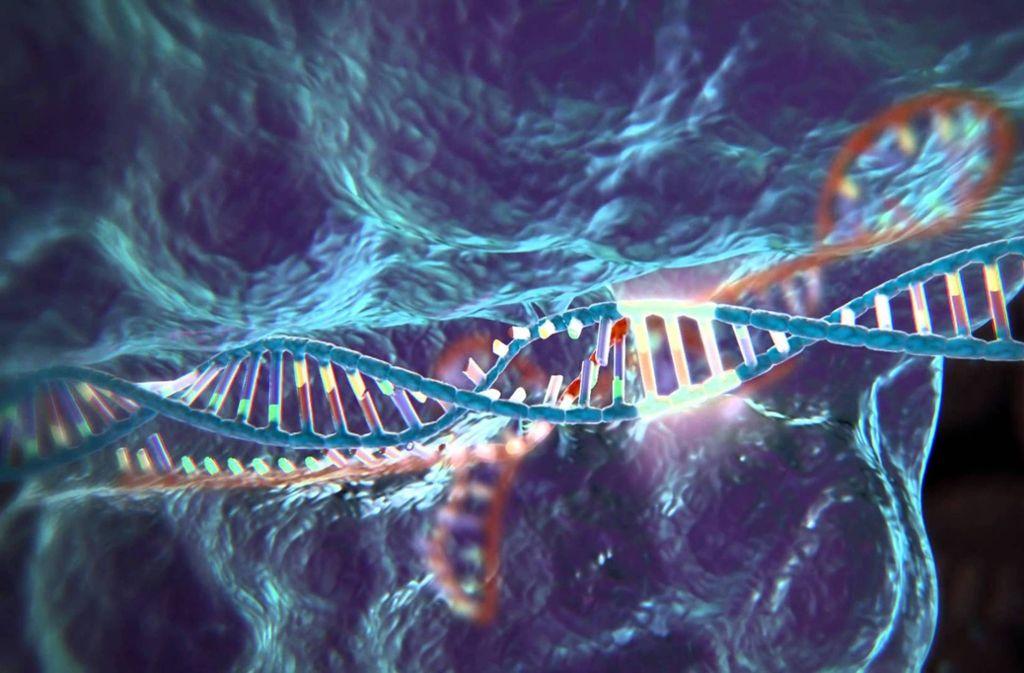 Die Genschere Crispr erlaubt präzise Eingriffe in das Erbmolekül DNA. Chinesische Forscher melden nun die Geburt von zwei Babys, deren Erbgut mit Hilfe der Methode verändert wurde. Foto:
