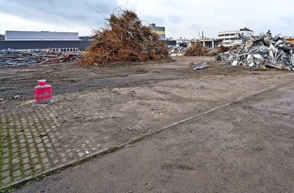 Vier neue Gebäude sollen auf dem ehemaligen Pharma-Areal an der Dieselstraße entstehen  – auch als neuer Standort für Bosch. Foto: factum/Weise