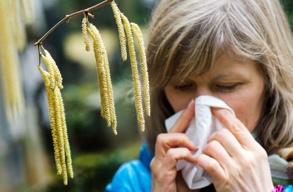 Der Pollenflug macht Allergikern ganz schön zu schaffen. Foto: dpa-Zentralbild