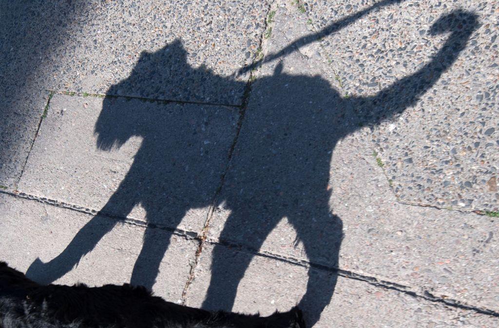 Kennen Sie diese Hunderasse? Machen Sie unseren  Test. Foto: dpa/Ralf Hirschberger
