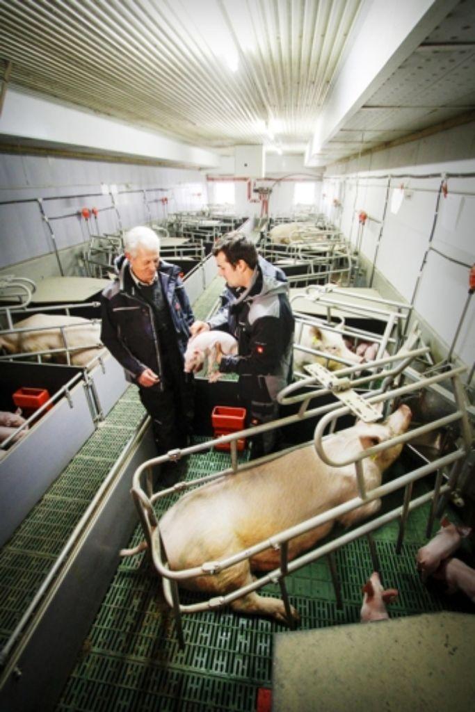 Sie sagen, dass sie  Schweine mögen: Günther (links) und Andreas Luidthardt. Foto: factum/Bach