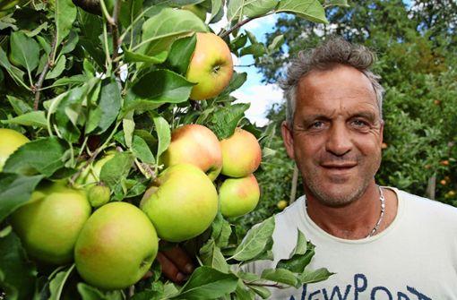 Apfelbäume nehmen sich eine Auszeit