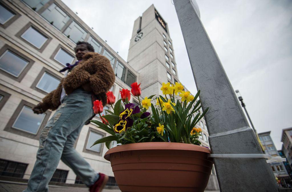 Der Frühling kehrt zurück in die Landeshauptstadt. Foto: Lichtgut/Leif-H.Piechowski