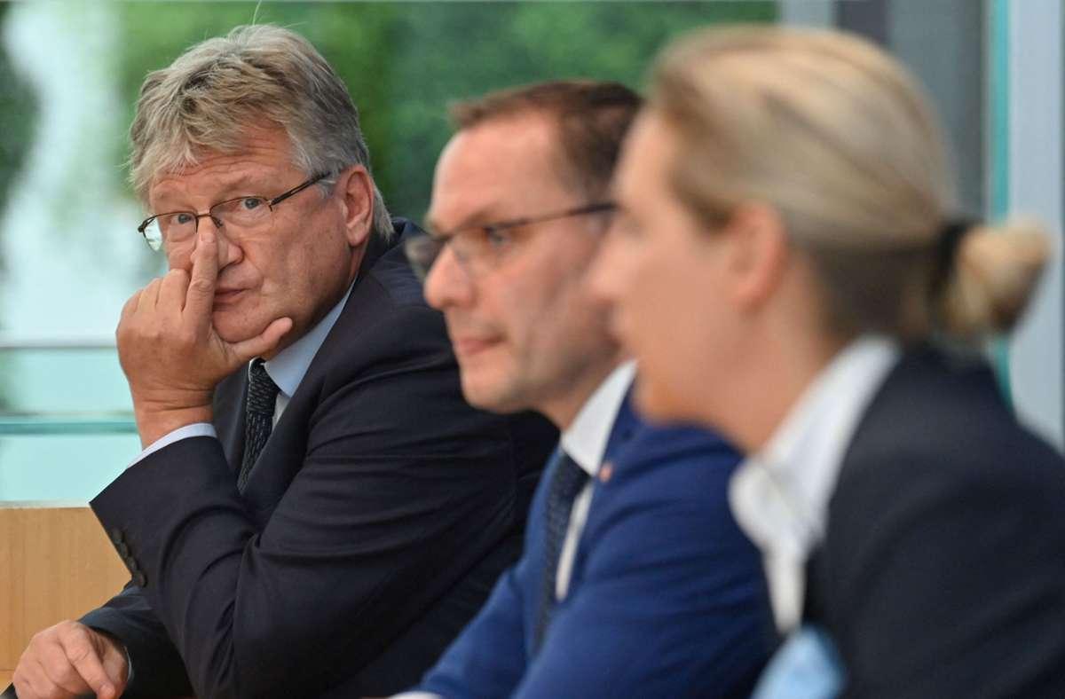 Jörg Meuthen, Tino Chrupalla und Alice Weidel (v.l.n.r.) Foto: AFP/JOHN MACDOUGALL