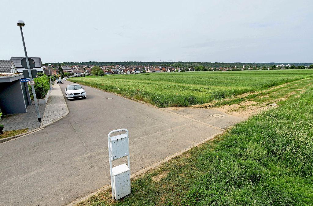 Das geplante  Wohngebiet liegt nordwestlich des Ortszentrums. Foto: factum/Bach