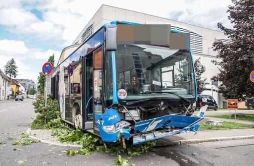 Linienbus fährt über Gehweg, Baum und Geländer