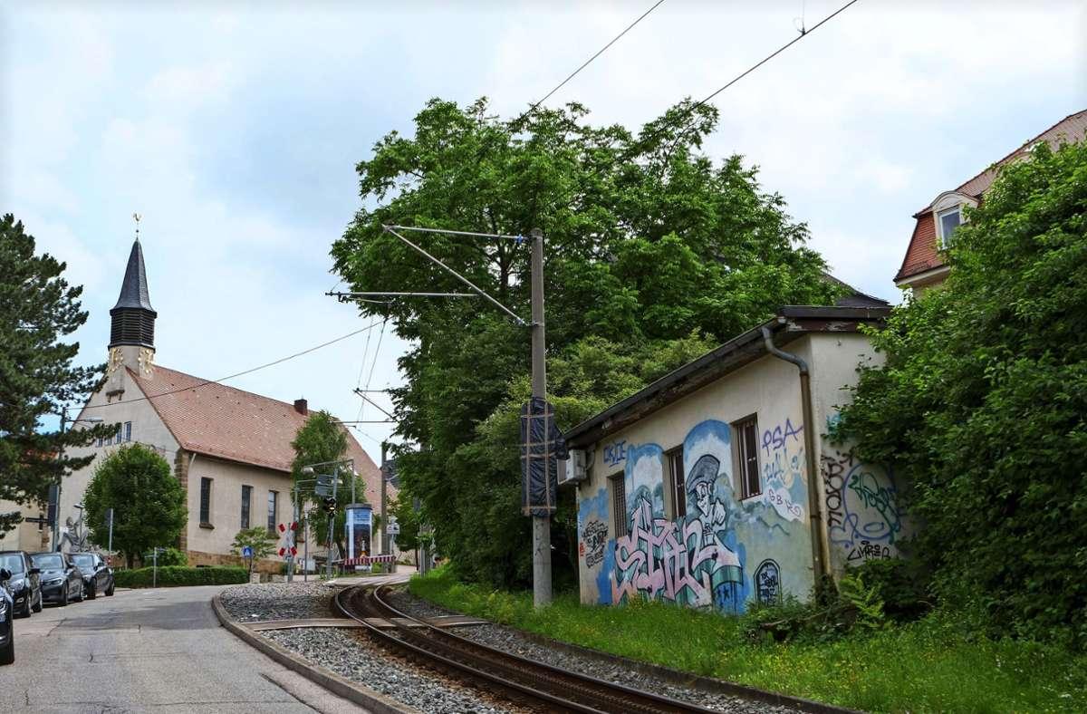 Das Grundstück mit dem kleinen Kiosk und dem alten, aber nicht mehr verkehrssicheren Baum befindet sich ganz in der Nähe der Haigstkirche. Foto: Jürgen Brand