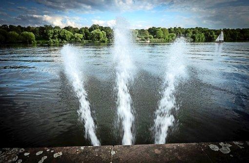 Sauerstoffgehalt im Max-Eyth-See steigt wieder