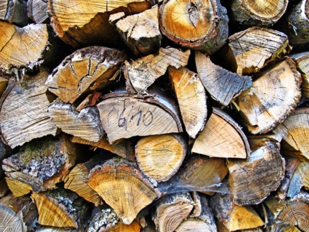Die  Dienstleistungen der Förster beim Holzverkauf stören die Kartellwächter – sie verzerren den Wettbewerb, sagen sie. Foto: dpa