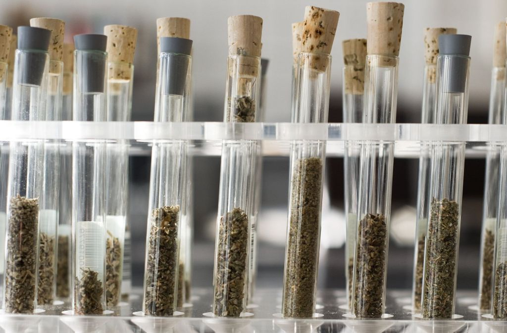 Die Zahl der Drogentoten in Baden-Württemberg ist im vergangenen Jahr deutlich gestiegen. Foto: dpa
