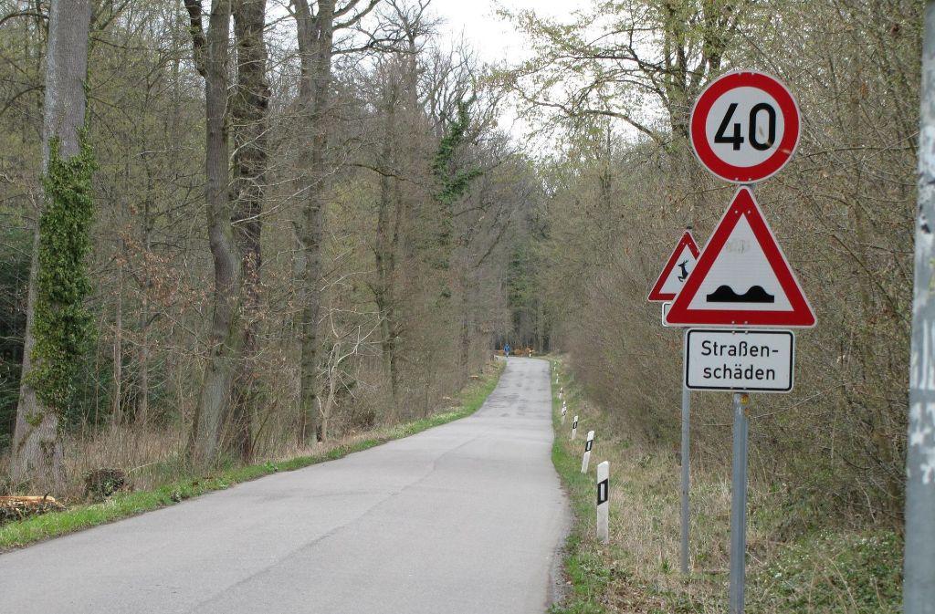 Sonntags herrscht hier auf dem Königsträßle in Stuttgart-Degerloch ein Fahrverbot für Autos. Foto: Archiv Sägesser