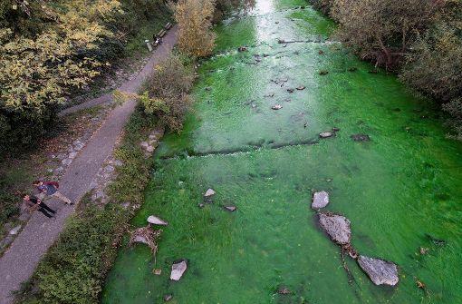 Ursache für giftgrün-gefärbten Fluss gefunden