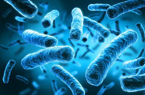 Badegast mit Legionellen infiziert