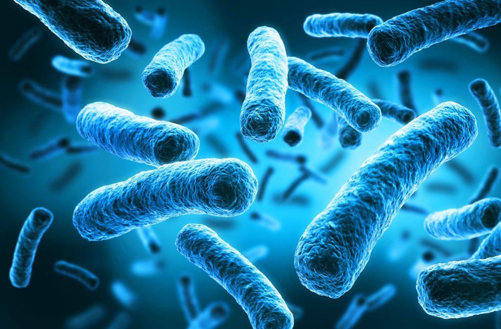 Im Leo-Vetter-Bad wurden Legionellen nachgewiesen. Foto: Adobe Stock/psdesign1; Lichtgut/Zwezygarth