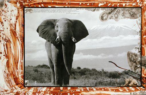 Fotocollagenkunst zwischen Natur, Erotik und Pop-Art