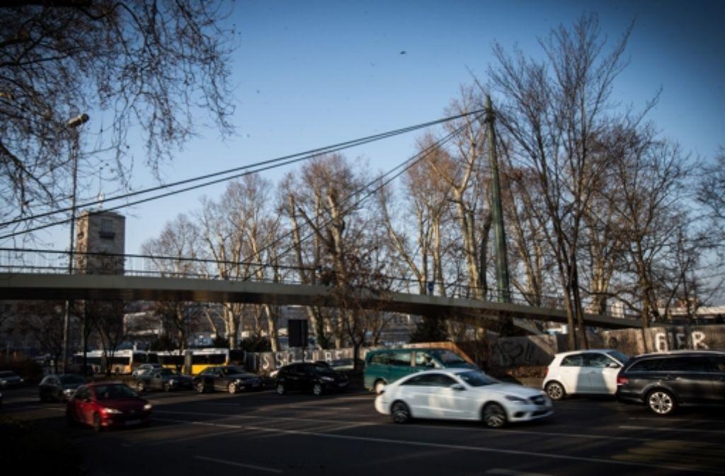 Zwei Bäume an der Schillerstraße müssen dem Stadtbahnbau weichen. Foto: Lg/Zweygarth