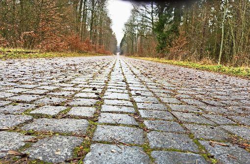 CDU will keine Autos auf der Panzerstraße