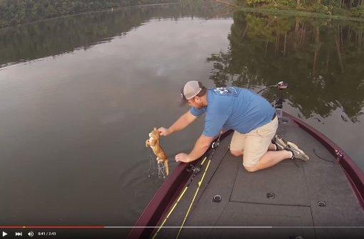 Mann fischt Katzen-Babys aus einem Fluss