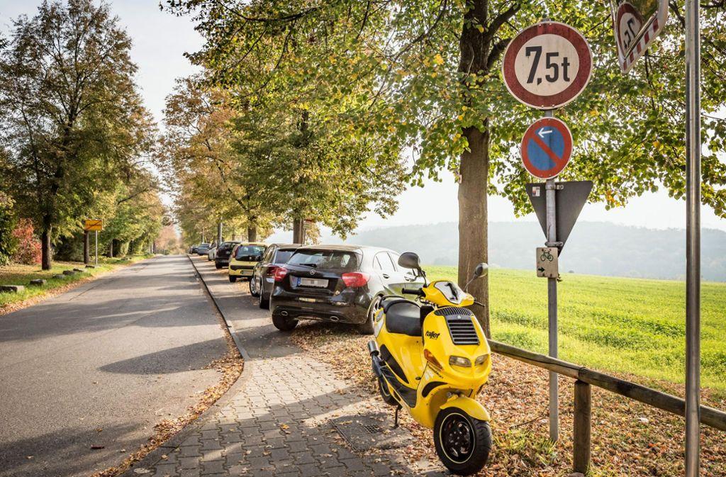 Wer an der Kirschenallee  in Hohenheim parkt, riskiert einen Strafzettel. Foto: Lg/Rettig