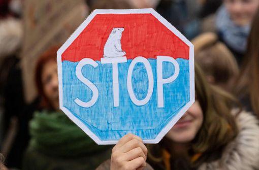 """Mann attackiert jugendlichen Redner bei """"Fridays for Future"""""""