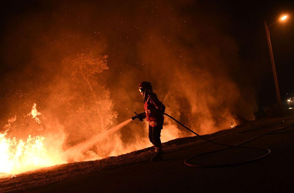 Bei den Waldbränden in Portugal sind mindestens 37 Menschen ums Leben gekommen. Foto: AFP