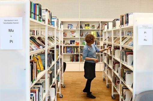 Neuer Rekord: 123000 Bücher und Spiele entliehen