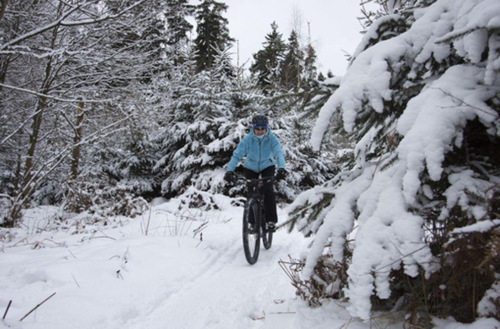 Damit die winterliche Fahrradfahrt nicht als böse Rutschpartie endet, gilt es ein paar wichtige Regeln zu beachten.  Foto: Pixabay