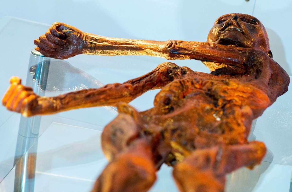 """Ein Replikat des 1991 in den Ötztaler Alpen entdeckten Steinzeitmenschen """"Ötzi"""" liegt im Museum für Naturkunde in Magdeburg. Foto: Klaus-Dietmar Gabbert/dpa"""