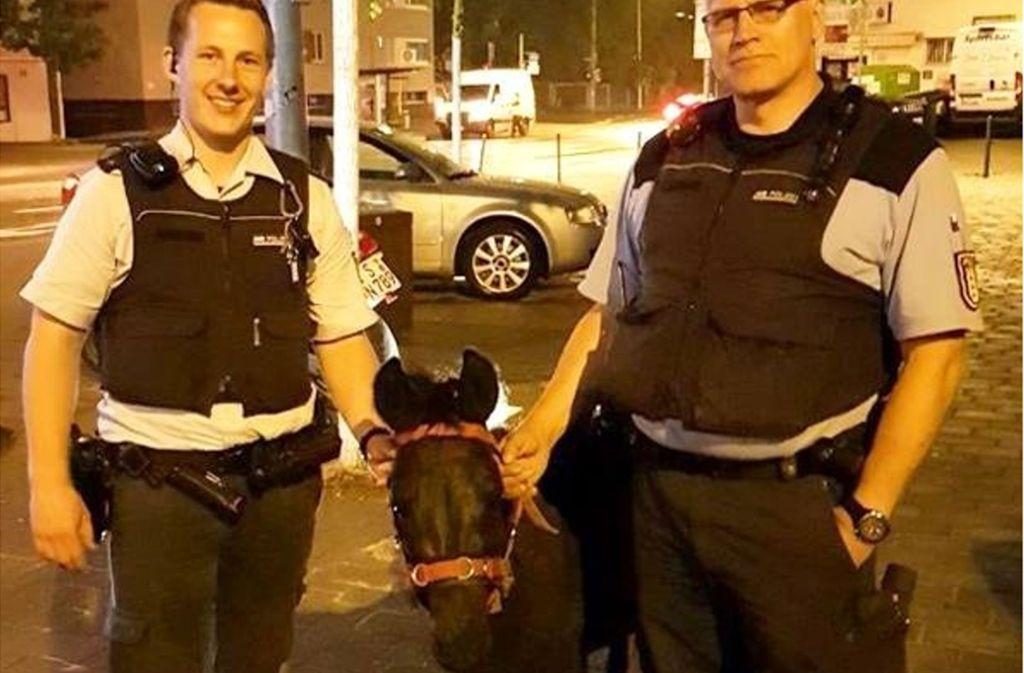 Das Pony konnte nach seinem nächtlichen Spaziergang in Stuttgart-Ost von der Polizei wieder eingefangen werden. Foto: Polizeipräsidium Stuttgart