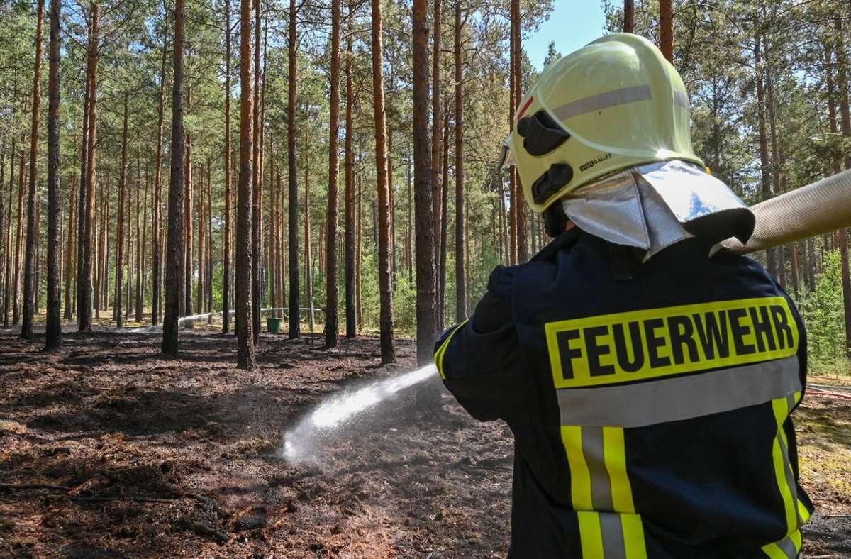 Die Waldbrandgefahr im Südwesten steigt. (Symbolbild) Foto: dpa/Patrick Pleul