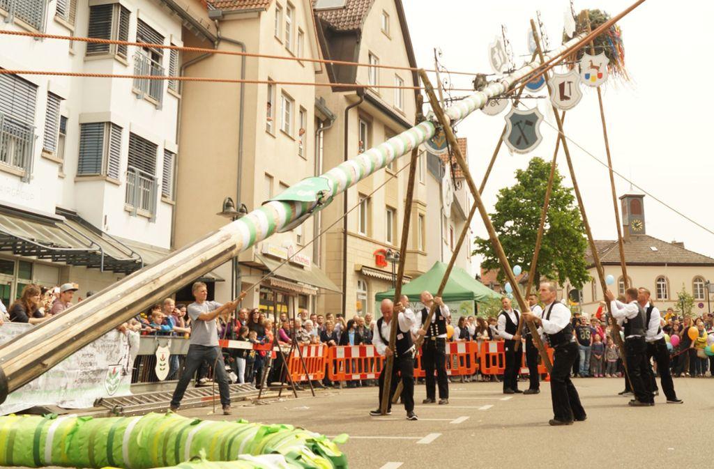 Das traditionelle Aufstellen des Maibaums soll auch dieses Jahr den Mittelpunkt des Maibaummarkts bilden. Foto: Andrea Eisenmann