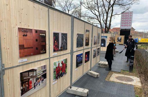 Ausstellung im Stadtpalais-Garten wird eröffnet
